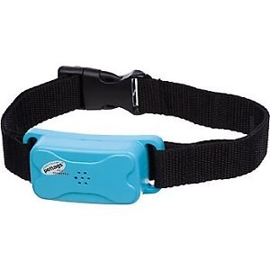antiblafband blauw met zwarte halsband van merk Pettags