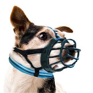Muilkorf Baskerville ergonomisch ontwerp bij een kleine hond