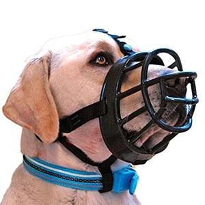 Muilkorf Baskerville ergonomisch ontwerp bij een labrador