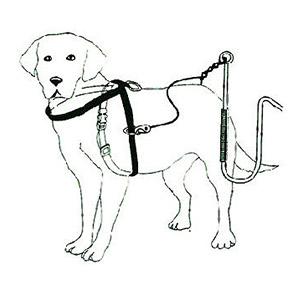 Altra-hondentuig van zwart nylon, multifunctioneel tuig voor het fietsen, wandelen of vervoer in de auto