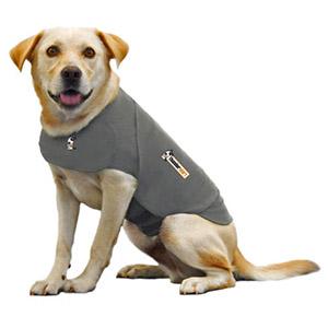 Witte hond met een grijs Thundershirt aan als oplossing voor angst of stress