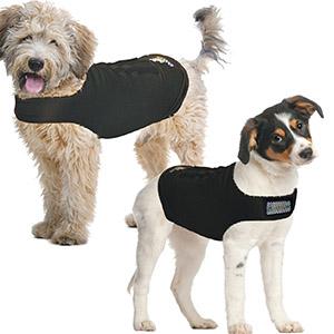 Zendog kalmerende shirt in kleur zwart gedagen door witte hondjes tegen de stress van vuurwerk of alleen zijn
