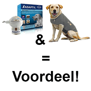 Adaptilverdamper en hond in thundershirt